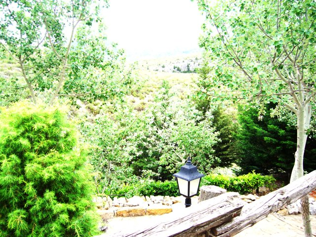 El jard n mediterr neo casa rural mol colomer arcs 298 - El jardin mediterraneo ...